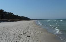 die Schaabe - Sandstrand